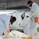 83,000 toxic chemicals pose unknown threats