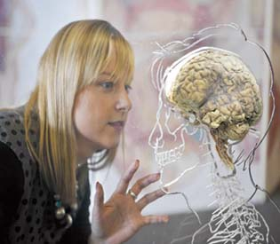 human rights observers Bad for the Heart Also Bad for the Brain health & fitness 1