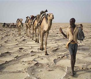 human rights observers - change looms for Ethiopia's Extreme salt mines environment