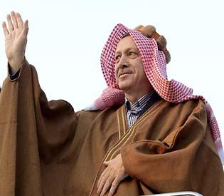 human rights observers - PM Erdogan finally agrees to halt park project eu crisis1