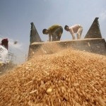 India food plan to 'make poor self-dependent'