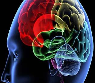 hromedia - Single Gene May Predict Mental Decline After Heart Surgery