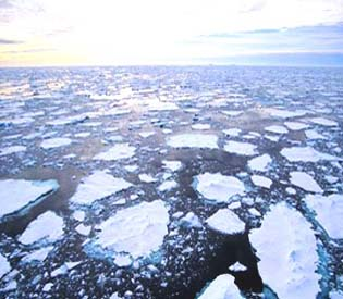 hromedia - melting-ice-floating