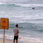 Australian surf deadlier than bushfires, sharks