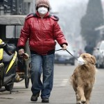 Air pollution kills 7 million people ever year, WHO says