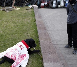 hromedia Russia 'Outraged' by Deadly Ukraine Shootout eu news2