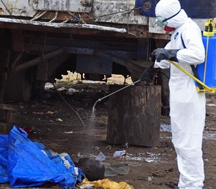 hromedia Experts warn, Ebola-hit Liberia staring into the abyss health and fitness2