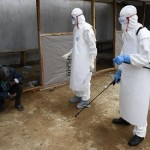 Roadside bandits in Guinea steal suspected Ebola blood samples