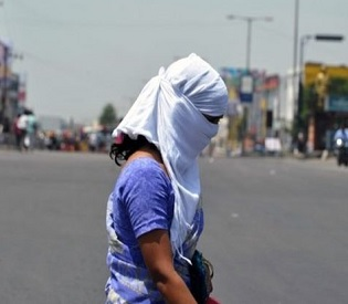 hromedia India heatwave kills 800 as capital's roads melt intl. news3