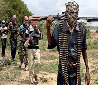 32 troops killed in Niger clash with Boko Haram