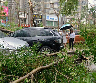 28 dead, 15 missing after typhoon lashes eastern China