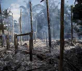 Rohingya villages razed