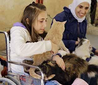 animal victims of Syria war