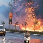 Thousands flee bushfires as Israel alleges arson terror