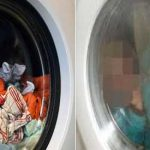 3-year-old brothers die in washing machine after mom leaves them home alone